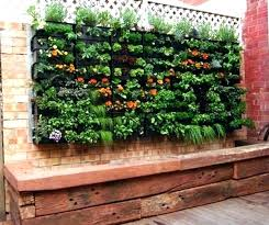 Herb Garden Layout Container Garden Plans Container Herb Garden Ideas Image For