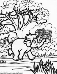 jungle animal coloring pages stunning coloring pages of sea