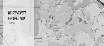 Greenville Sc Map Find An Experienced Vet In Greenville Sc For Complete Animal