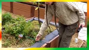 Rooftop Garden Design Solar Powered Rooftop Garden Design Owners Share Practical Tips