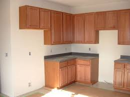 Cabinet For Kitchen Prefab Kitchen Cabinets Cavareno Home Improvment Galleries
