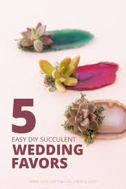 succulent wedding favors cheap and easy diy succulent wedding favors succulents and