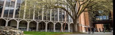 campus tree removal facilities services blog