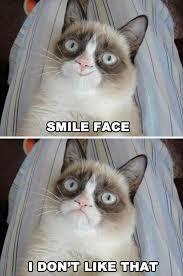 Grumpy Face Meme - grumpy cat smile face cats grumpy cat pinterest grumpy