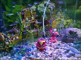 pictures of aquariums with ornaments including rocks and plastic