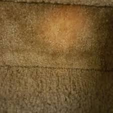 Upholstery Cleaning Tucson Dave U0027s Carpet Cleaning 15 Photos U0026 26 Reviews Carpet Cleaning