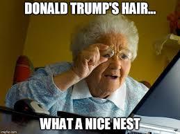 Nice Hair Meme - grandma finds the internet meme imgflip