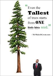 one tree one seed motivational speaker author entrepreneur