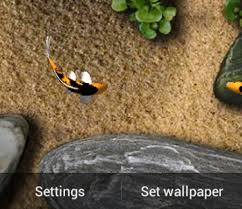 wallpaper ikan bergerak untuk pc unduh koi free live wallpaper gratis android download koi free