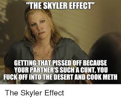 Skyler Meme - the skylereffect getting that pissed off because your partners such