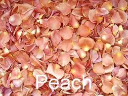 Dried Roses Biodegradable Premium Freeze Dried Rose Petals