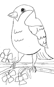 free summer coloring pages coloring pages please visit spring summer spring summer coloring