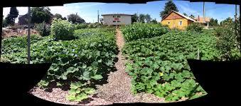 kailash ecovillage u2013 gardens