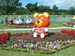 Flower Garden Hanoi by Da Lat Flower Garden Da Lat Attractions Viet Holiday Travel