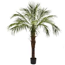 Artificial Trees Home Decor Ashleigh Faux Robellini Palm Tree In Pot Products Pinterest