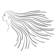 sketch of woman u0027s profile with long hair stock photo image 50037676