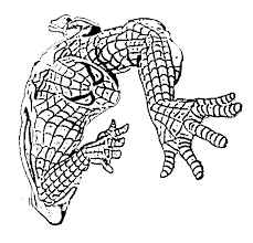 coloring spiderman coloring pages kids
