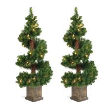 trees for sale near me home depot trees for sale in