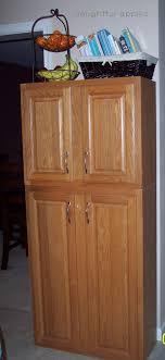 kitchen pantry furniture new kitchen pantry cabinets bitdigest design