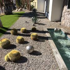 rocks in garden design rock garden design with cactus plants designs trends premium
