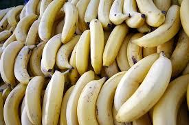 low fiber low residue diet your gi center gastroenterology