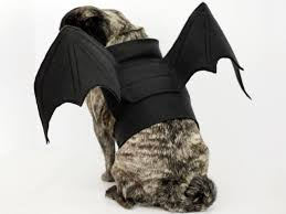 bat wings costume pattern