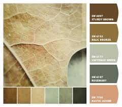 1732 best images about color inspiration on pinterest color