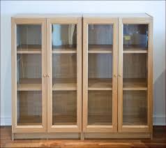Ikea Bookcases With Doors Bookshelf Bookcase Closet Door Diy Also Bookcase Door Costco In