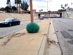 painted tumbleweed by charles level los angeles blue color