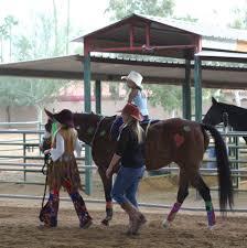 flying fox farm horse boarding and training in scottsdale arizona
