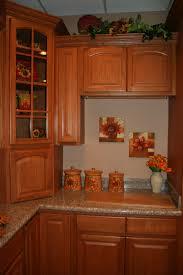 cinnamon shaker kitchen cabinets cinnamon oak kitchen cabinets design kitchen cabinets home