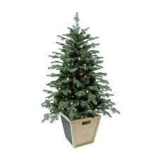 potted christmas tree potted christmas trees christmas decorations the home depot