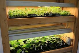 grow light indoor garden it s time to dust off your indoor plant stand or build your own grow
