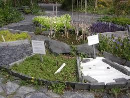 13 best sensory garden images on pinterest sensory garden