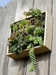 11 ways to fall in love with indoor gardens this season planters