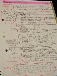 11 best tutorial images on pinterest cornell notes template