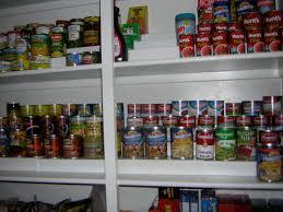 Pantry Shelf Cat Food San Diego Professional Organizer Image Consultant