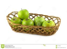 ripe green apples in long brown wicker basket isolated stock