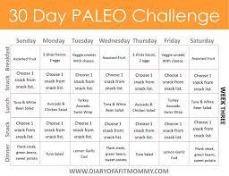 best 25 paleo diet meal plan ideas on pinterest paleo diet plan
