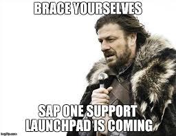 Sap Memes - the sap scn meme thread