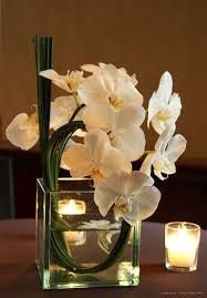 Orchid Flower Arrangements Cocktails Floral Arrangement Modern Wedding Pinterest Floral