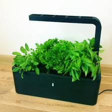 Winter Indoor Garden - click and grow low maintenance indoor vegetable and herb garden