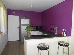 deco peinture cuisine tendance couleur cuisine tendance fabulous couleur cuisine tendance dco avec