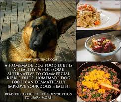 85 best raw diet dog images on pinterest pet food raw dog food