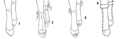 draw front view of shoes i draw fashion