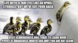 I Ve Got Your Back Meme - new meme entries life with ic may feel like an uphill struggle