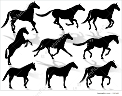 mustang horse silhouette domestic animals horses silhouettes stock illustration i1502467