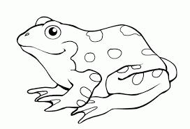 imagenes de un sapo para dibujar faciles para colorear