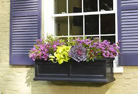 madison flower boxes