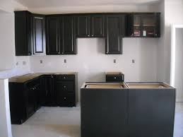 Black Shaker Kitchen Cabinets by Painting Knotty Pine Cabinets